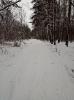 Беспятовская роща 2017 зима